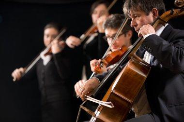 Symphony orchestra performance celloist close-up