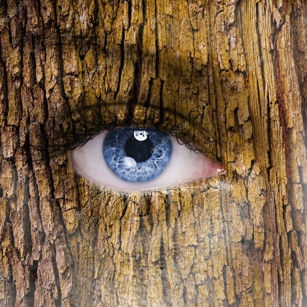 Human face with open eye covered in a tree bark texture