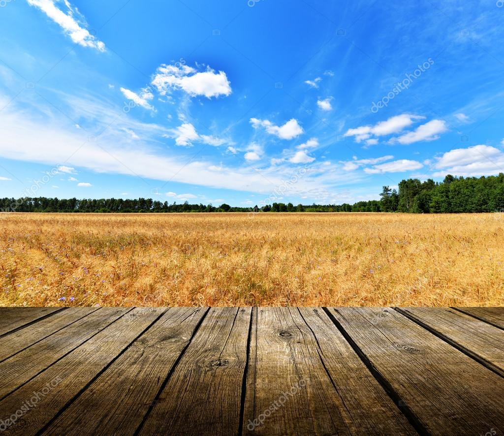 Empty Wooden Deck Table With Blue Sky And Field Stock