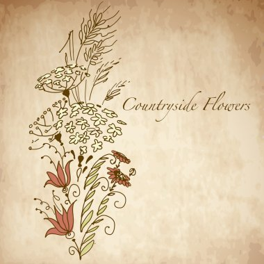 Countryside flowers, greeting card with hand drawn flowers stock vector