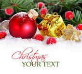 Vánoční hranice s červeným cetka, zlatý dárek a sníh