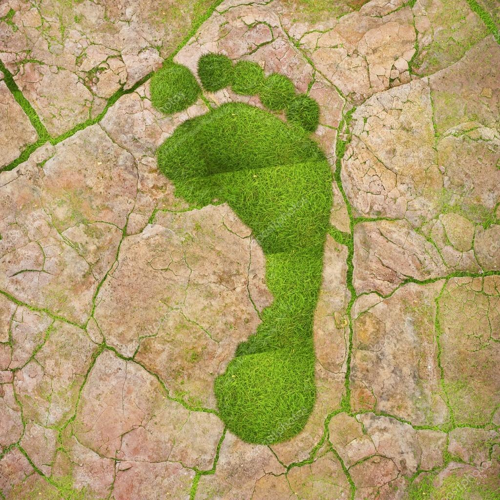 Ecological footprint.