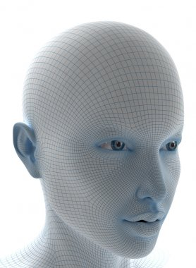 Face with soft wireframe
