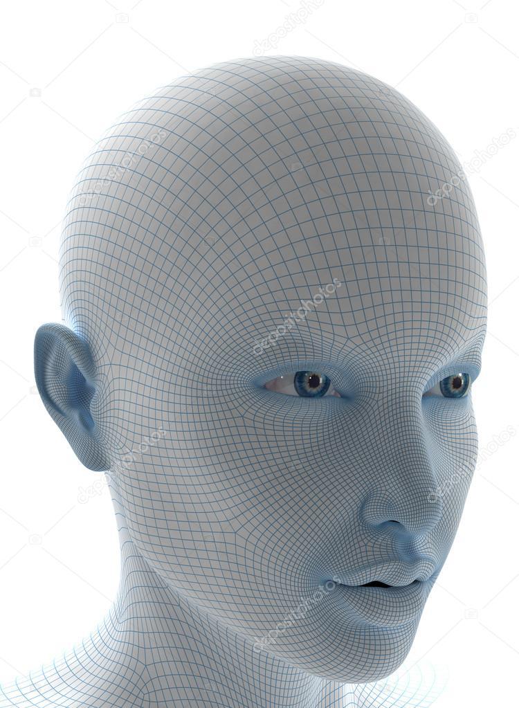 das Gesicht mit weichen Drahtmodell — Stockfoto © CLIPAREA #13279936