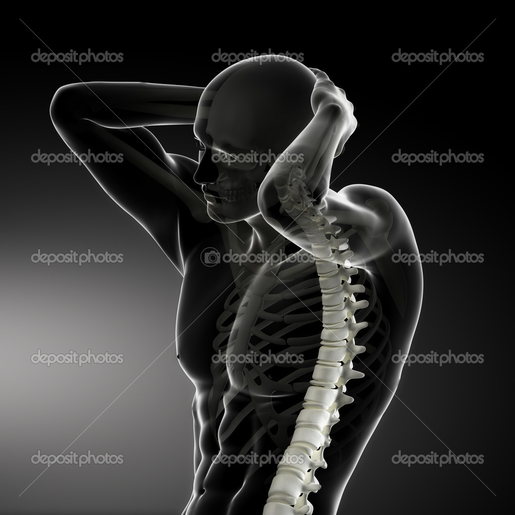 exploración columna vertebral del cuerpo masculino — Fotos de Stock ...