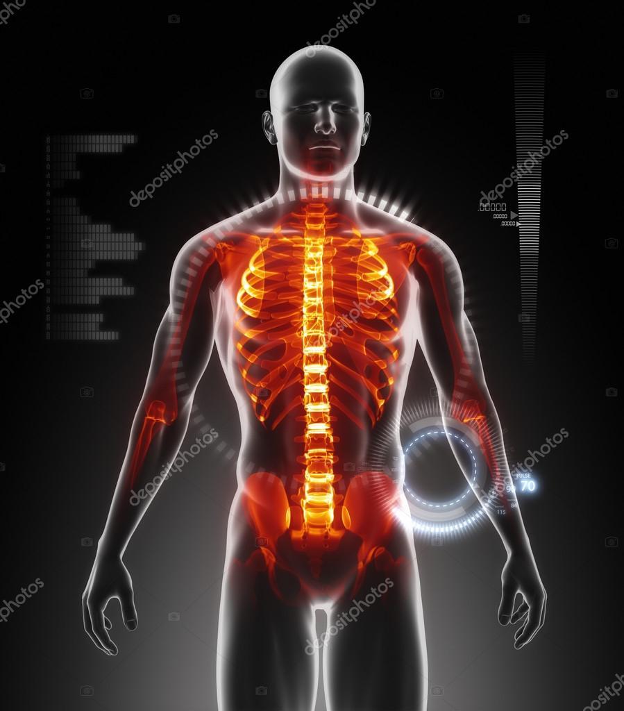 Mensch-Körper-scan — Stockfoto © CLIPAREA #21616535