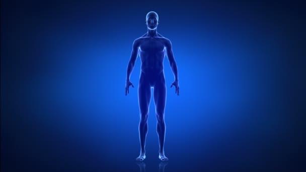 sportu a zdravého životního stylu člověka koncepce