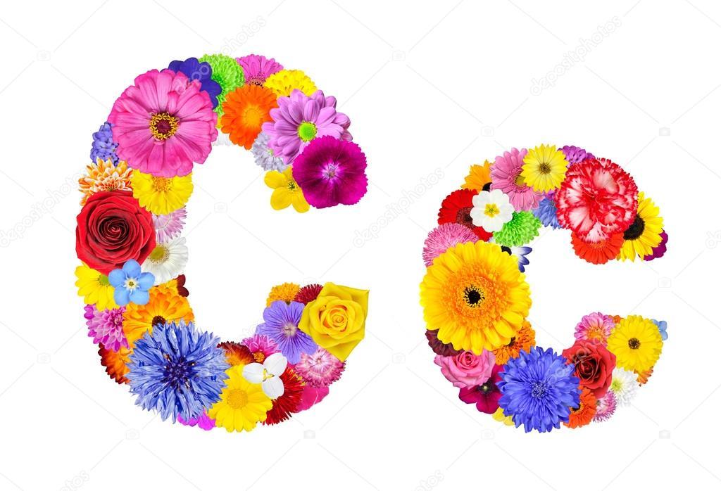 Flower Alphabet Isolated on White - Letter C