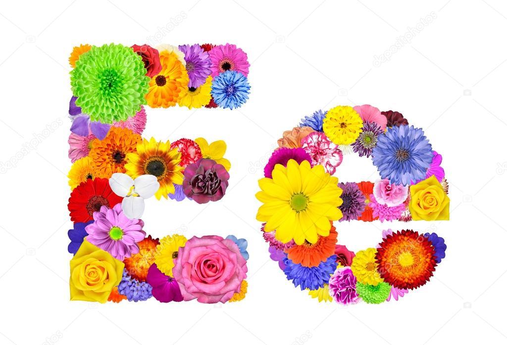 Flower Alphabet Isolated on White - Letter E