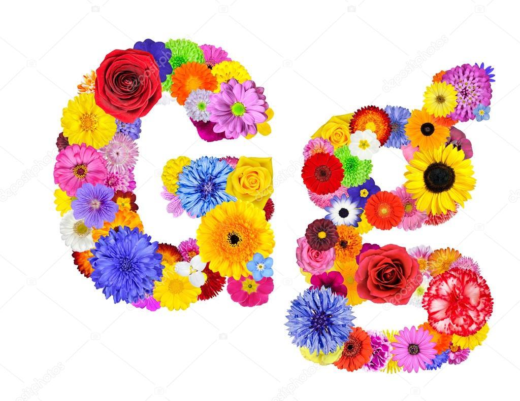 Flower Alphabet Isolated on White - Letter G