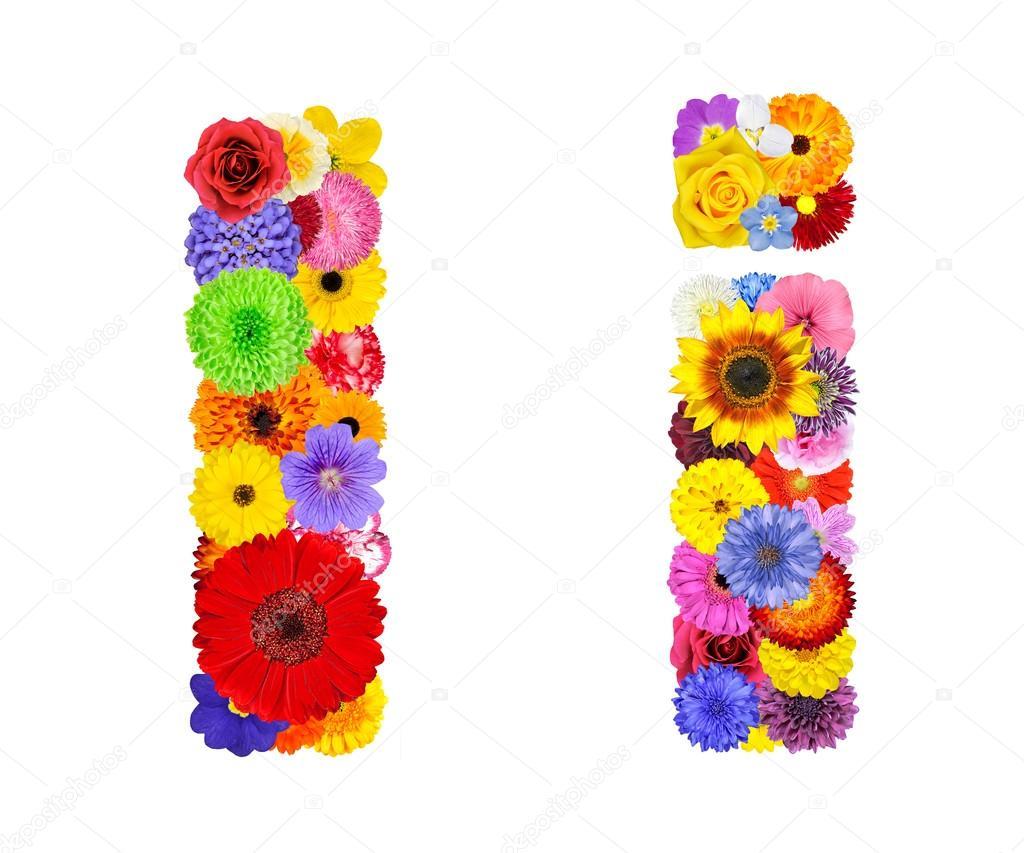 Flower Alphabet Isolated on White - Letter I