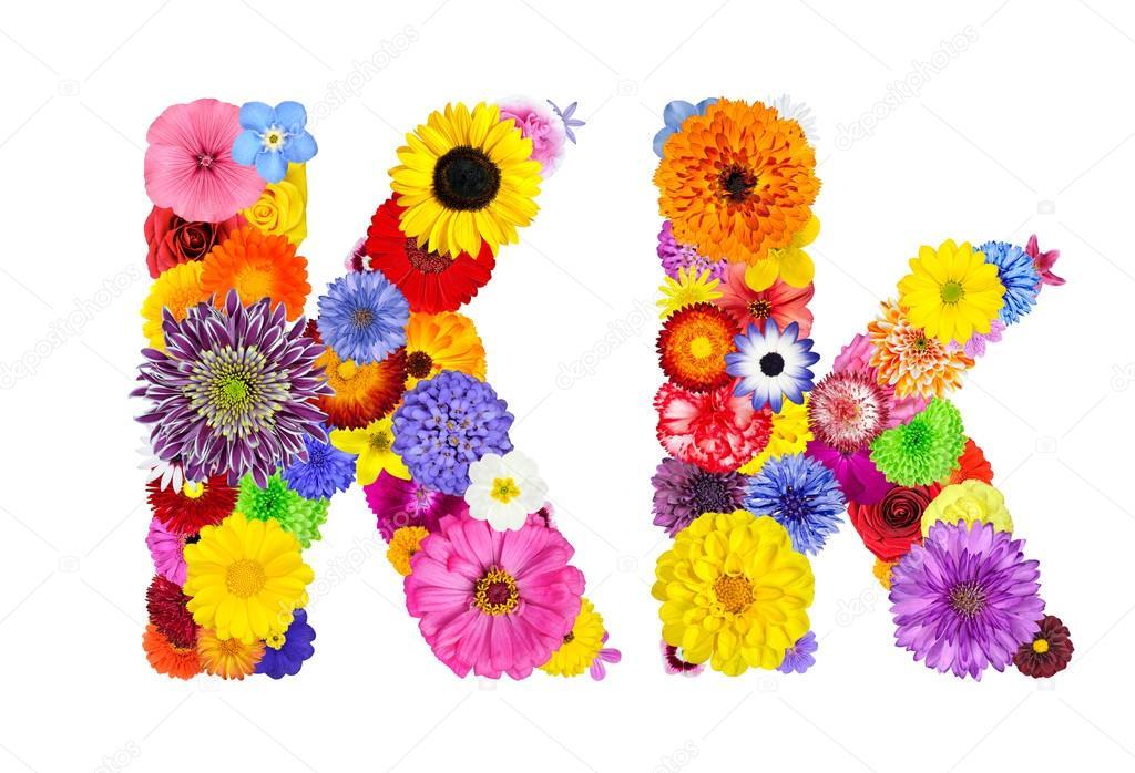 Flower Alphabet Isolated on White - Letter K
