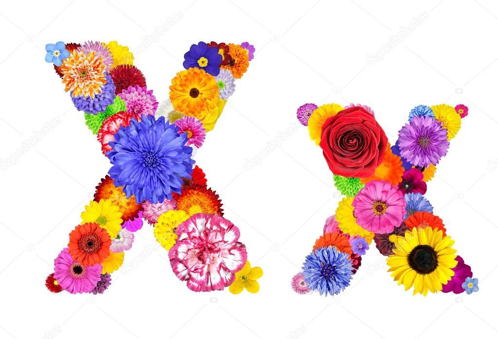 Flower Alphabet Isolated on White - Letter X