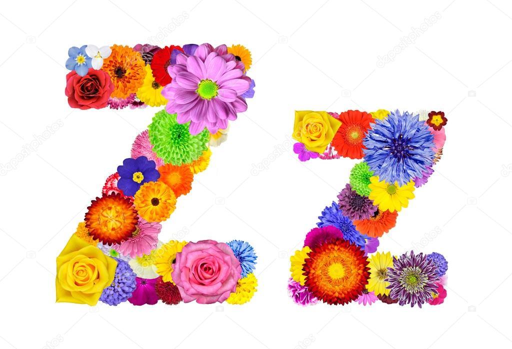 Flower Alphabet Isolated on White - Letter Z