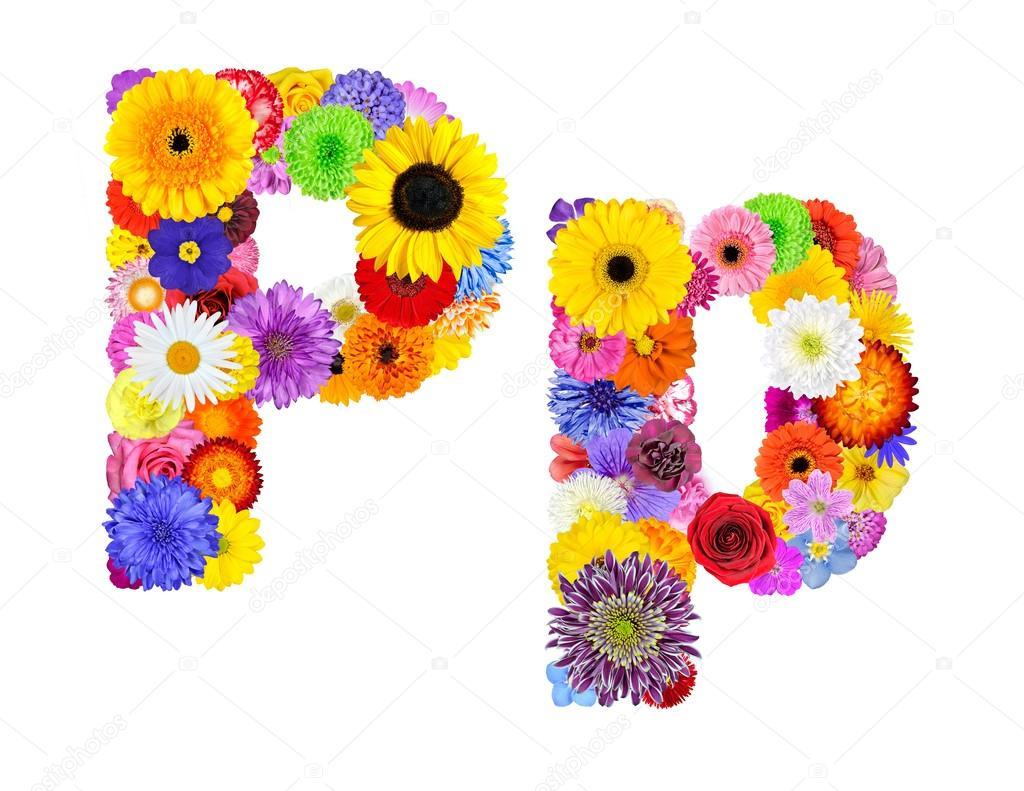 Flower Alphabet Isolated on White - Letter P