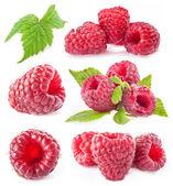 Photo Raspberry