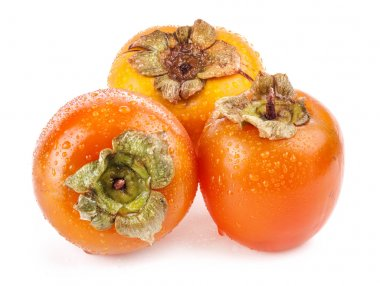 Persimmon isolated on white background stock vector