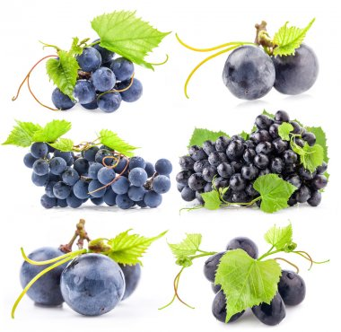 Collections of Dark grapes