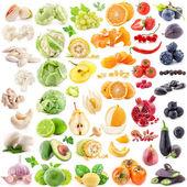 Fotografia raccolta di frutta e verdura