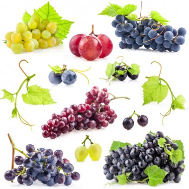 Collection of grapes