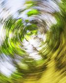 na jaře listy v radiální pohybu