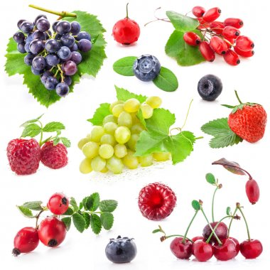 Collection of berry fruit