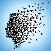 létající ptáci do lidské hlavy