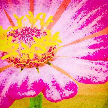Close Up Flower, Retro Look