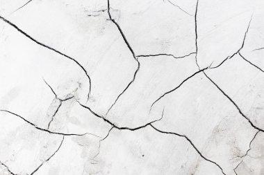 Cement Crack Texture