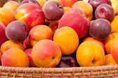 Fotografie Haufen bunter Sommer Früchte