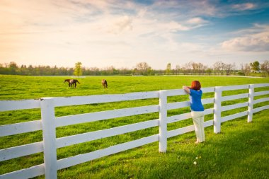 Woman enjoying countryside view with green pastures and hors