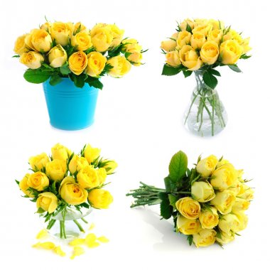 Yellow rose bouquet set isolated on the white