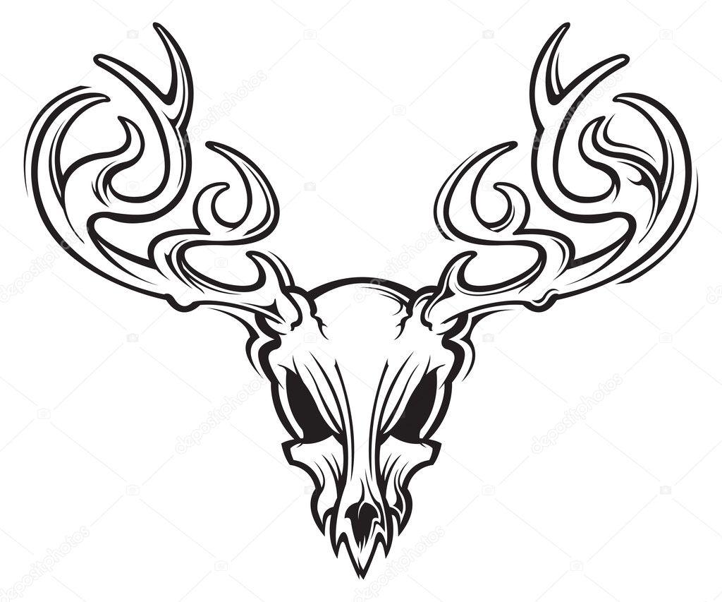 Deer Skull Stock Vector C Slipfloat 21667223