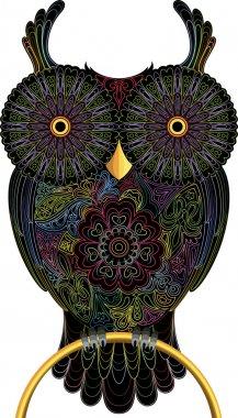 Owl, color contour