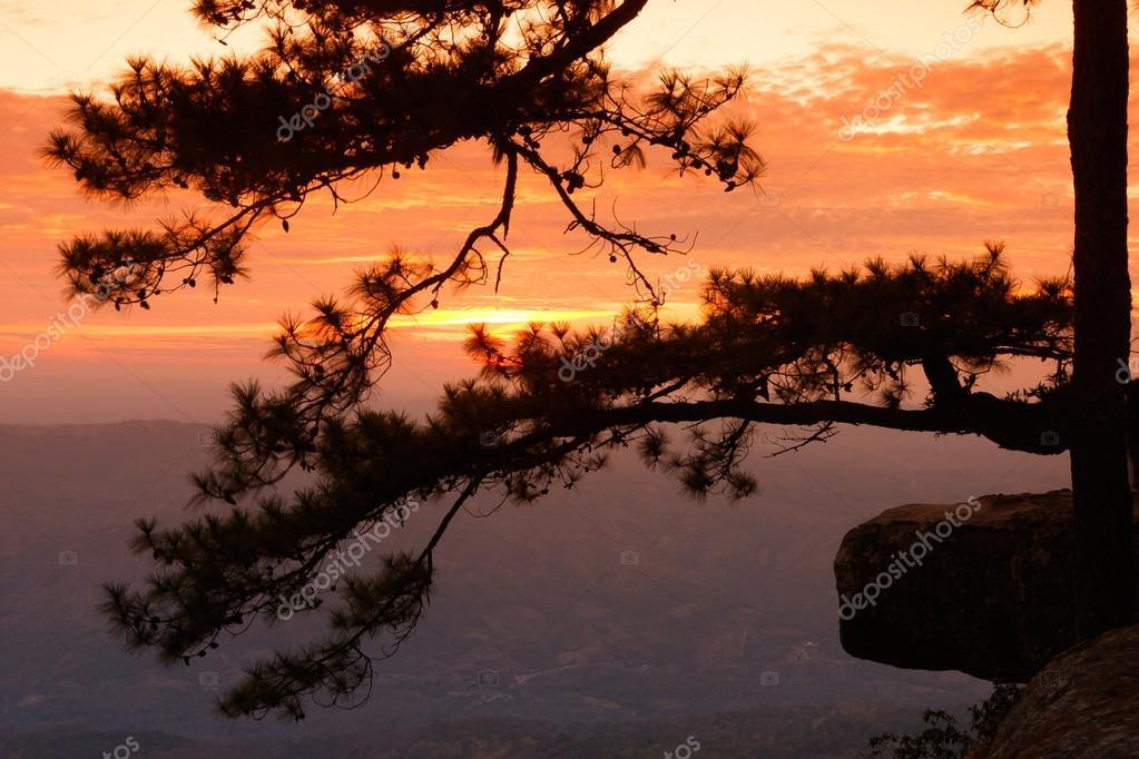 Sunrise View point at Phukradung National Park, Loei Province, T