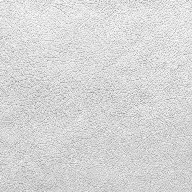 White leather texture or background stock vector