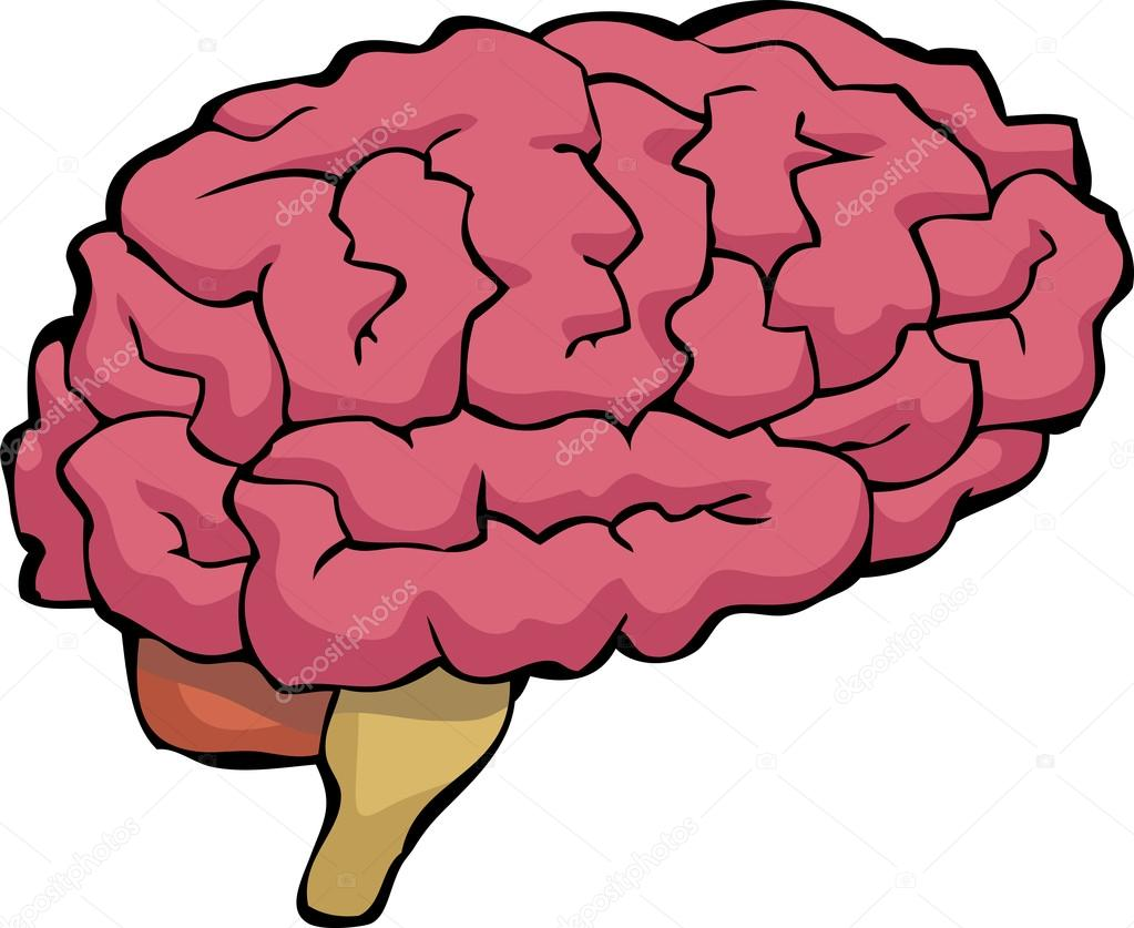 20981244 also Proud Of Our Pidgin The Newest Language In The Us Census 20160405 further Oh My Darling Tour Guides likewise Left Brain Vs Right Brain additionally 76321712. on cartoon brain