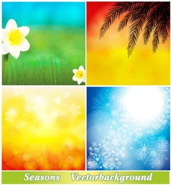 Background spring, summer, autumn, winter