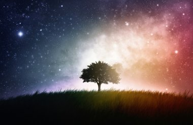 Single tree space background