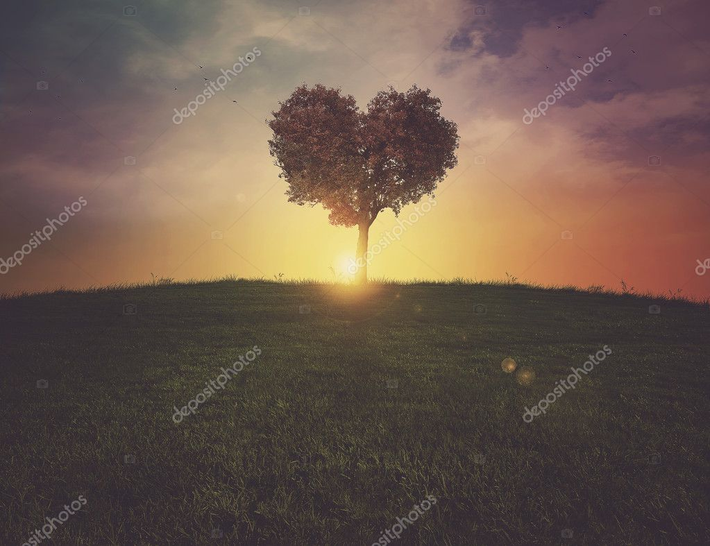 Heart tree sunset