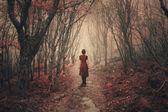 Fotografia donna e foresta nebbiosa