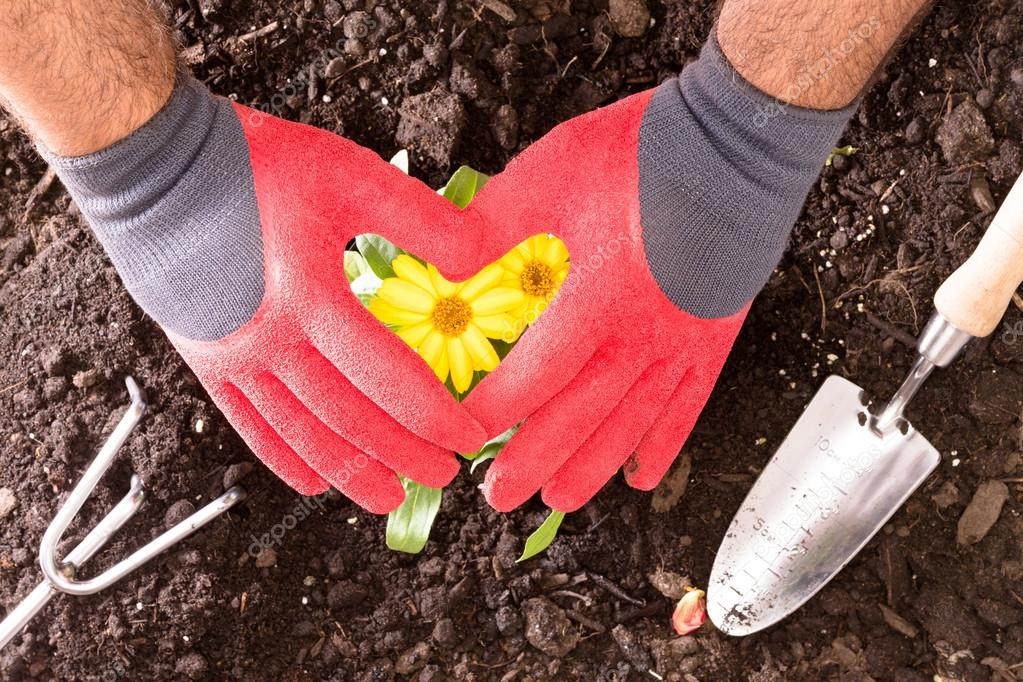 Gardener making a heart with his gloved hands
