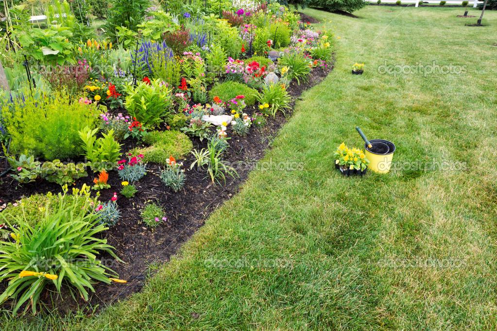 Piantare celosia gialla in un colorato giardino foto for Piantare un giardino