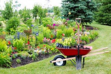 Landscaping the garden