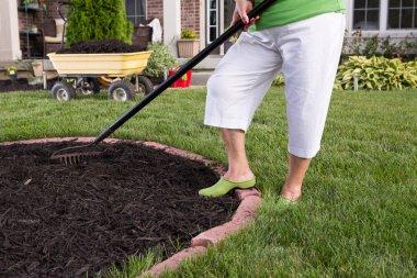 Senior woman mulching a flowerbed