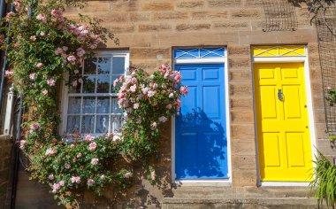 Colorful cottages with climbing roses