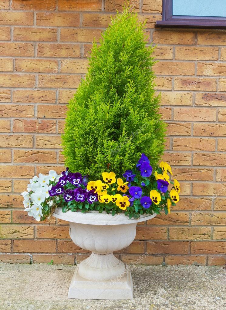 Contenitore giardino d 39 inverno e primavera fioritura for Contenitore giardino