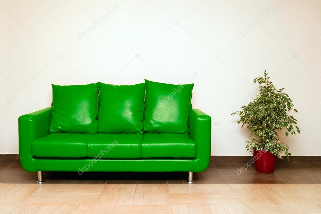 Green Leather Sofa With Pillow And Plant — Stock Photo #25970405