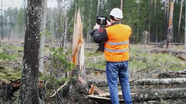 lesní úředník s tablet pc v zničených lesů Epizoda 3