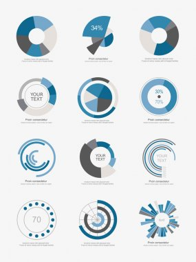 Info-graphic pie charts